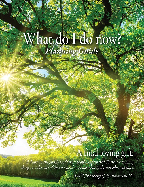 Planning Guide - What do I do now? (Tree)