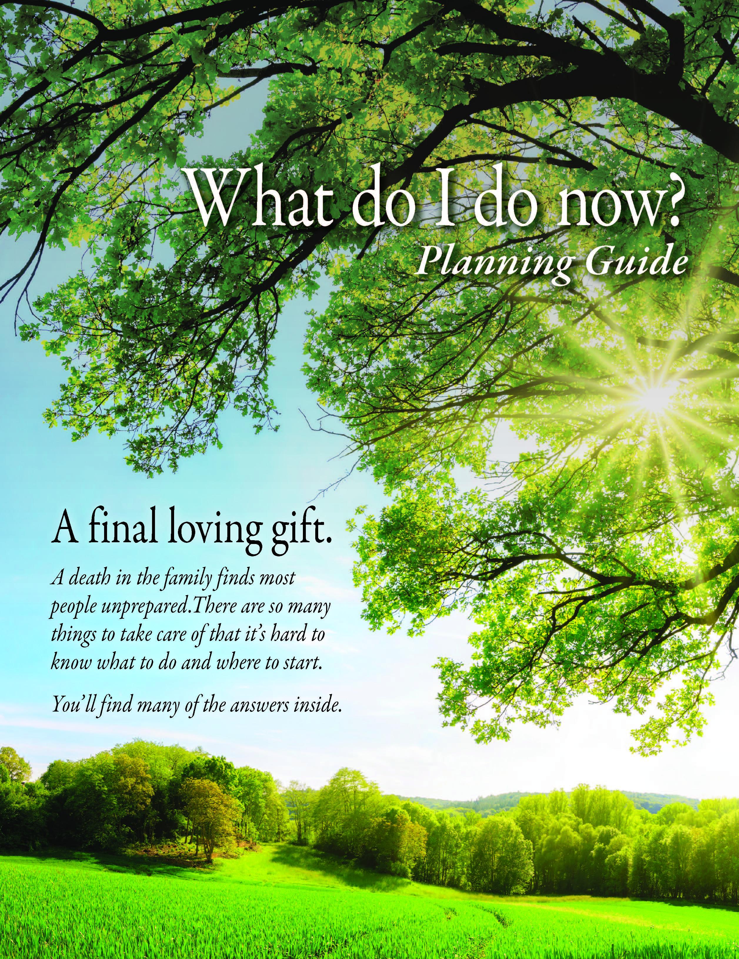 Planning Guide - What do I do now? (Blue Sky)